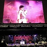 """Purple Rain"" Is Next Movie To Play the Theatrical Drive-in Experience Radial Park at Halletts Point Play Starting October 19, 2020"